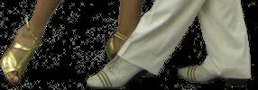 www.ZapatosParaBailar.com